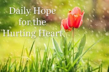 Daily Hope for the Hurting Heart with Diane K Hiltz Chamberlain